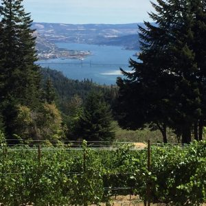 About Brehm Vineyards